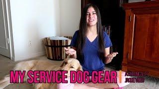 My Service Dog Gear Haul! 🐕 – Dog Training Code